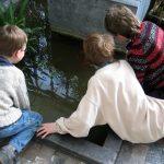 子供英会話と大人の英会話学習の効果