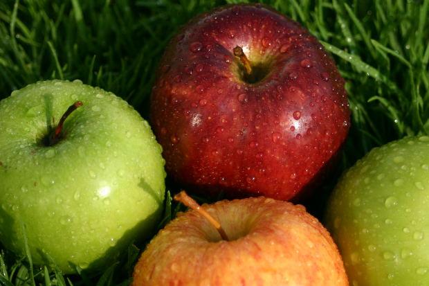 英語では通じない和製英語の単語・外来語の紹介:日本語の和製英語について:フルーツと野菜編