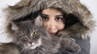 cat, kitty, pussycatの意味とは? 英語で猫という意味になる単語と表現
