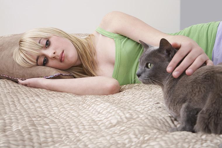 「子猫」という意味になる「kitty」や「kitty cat」の使い方・ニュアンス