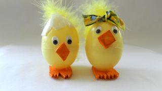 「chicks」って英語でどういう意味なのでしょうか?