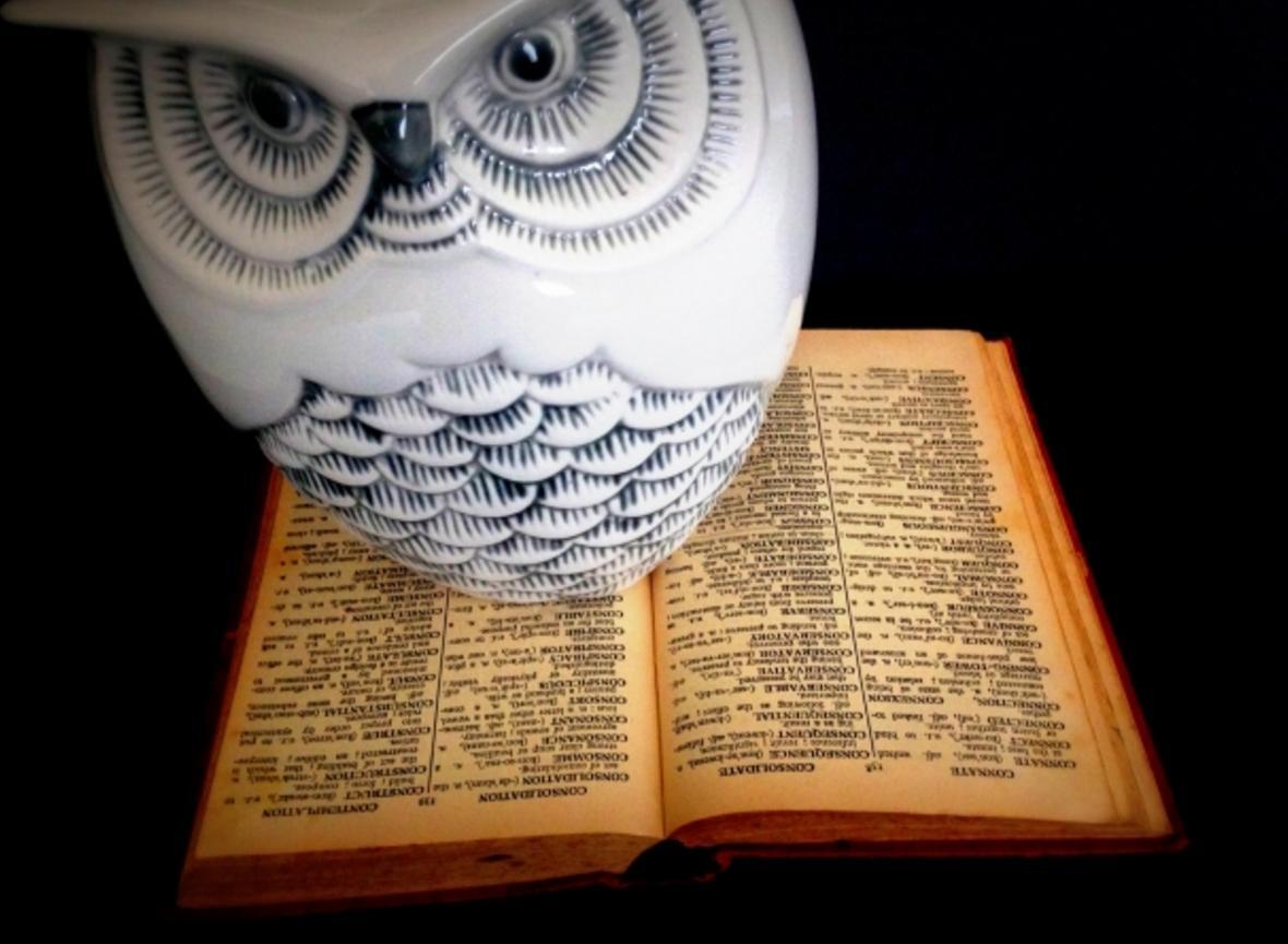 「理系」、「文系」は英語で何と言う?性格や学歴について話す際に使えるボキャブラリーとフレーズを紹介
