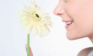 英語で「鼻が高い」や「顔が小さい」は何と言う? 外国人との会話で言ってはいけない表現