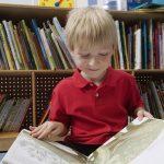「絵本」や「子供絵本」は英語で何という?