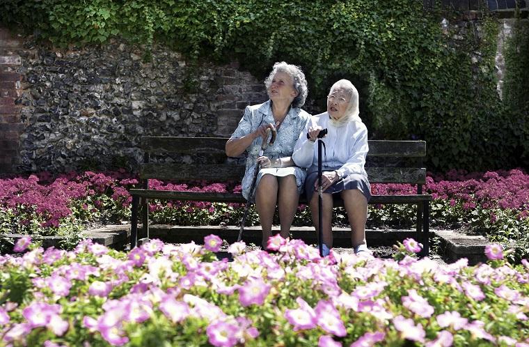 お年寄りや障害者が使う「杖」という意味の英語「cane」「walking cane」