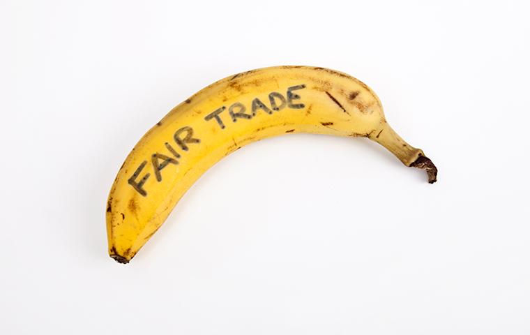 banana republicの意味と使い方は?
