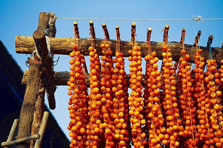 英語で「柿」という意味の「oriental persimmon」という言い方